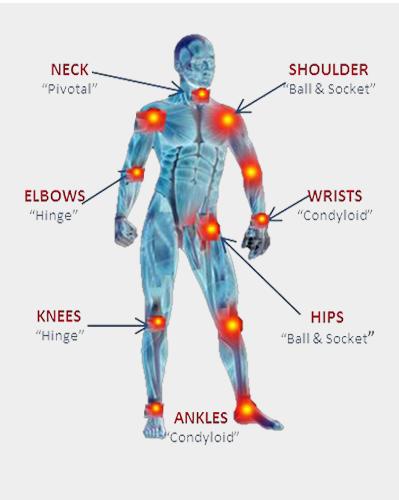 pivotal joints
