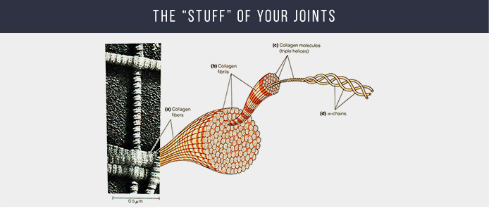 The stuff of joints
